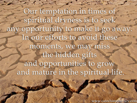 """Our temptation in times of spiritual dryness is to seek any opportunity to make it go away. In our efforts to avoid these moments, we may miss the hidden gifts and opportunities to grow and mature in the spiritual life."" - quote on background of dry land"
