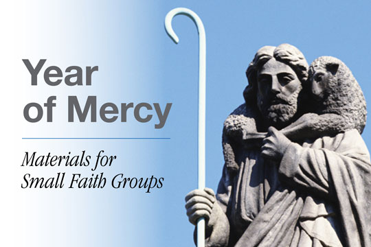 Year of Mercy - materials for small faith groups