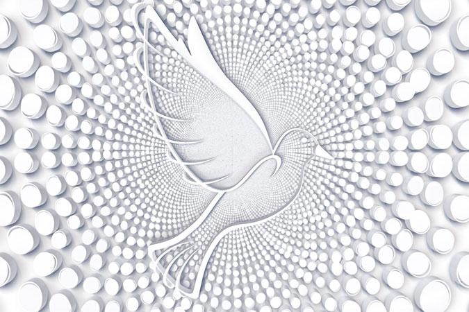 dove - symbol of Holy Spirit