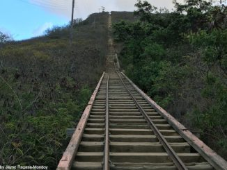 Koko Head Crater Steps