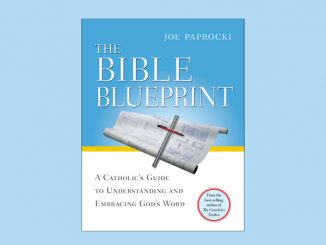 Bible Blueprint by Joe Paprocki - also available in Spanish