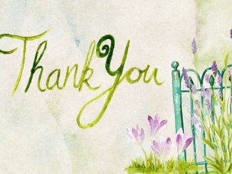 Thank you - words written on a garden scene