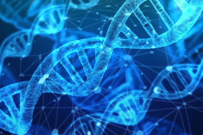 faith and science - DNA