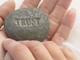 "word ""trust"" on rock"