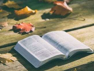 open Bible amidst fall leaves