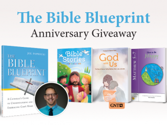 Bible Blueprint Anniversary Giveaway - book covers of Bible-themed books